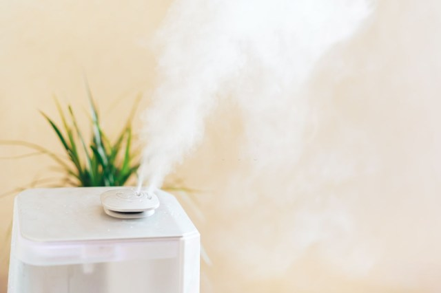 Home Humidification System