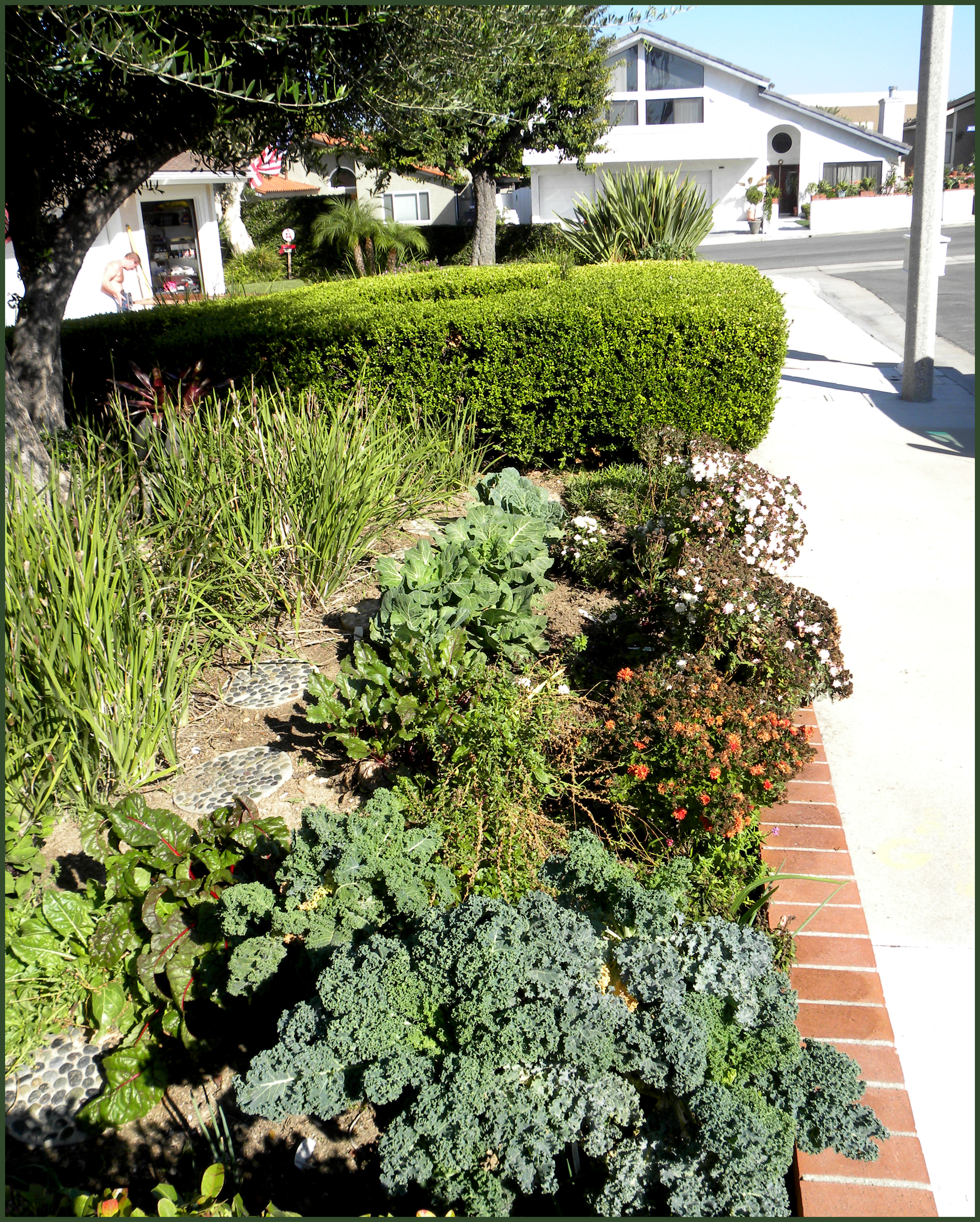 sidewalk garden