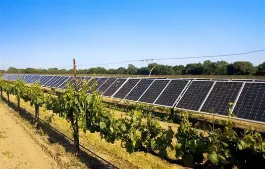 Solar powered wineries, Google announced in 2011 a $280 million dollar deal with SolarCity, a solar paneling company that will build and lease solar power systems to between 7,000 and 9,000 homeowners, according to Reuters. This is Google's largest investment yet and sends a major message about its trust in clean, renewable energy. While this is major economic news, it isn't news to many wineries who were years ahead of the pack using solar panels as a way to reduce their carbon footprint. With wineries from California to New Zealand making use of solar paneling, similar to those made by SolarCity, it was about time Google jumped on the bandwagon!