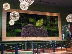 This environmentally-friendly restaurant, located in the East River Plaza at 117th St., East of Pleasant Ave. in New York City, will mark Apple-Metro, Inc.'s 35th Applebee's location.