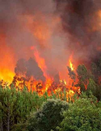 Delicate Dance of Using Data to Fight Forest Fires