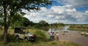 Singita Kruger National Park green travel