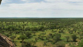 Singita Kruger National Park Switches to Solar Powered Lighting