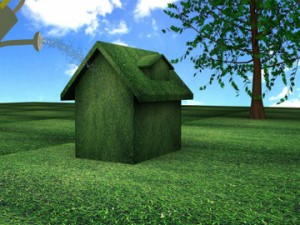 Green Energy Efficient Home