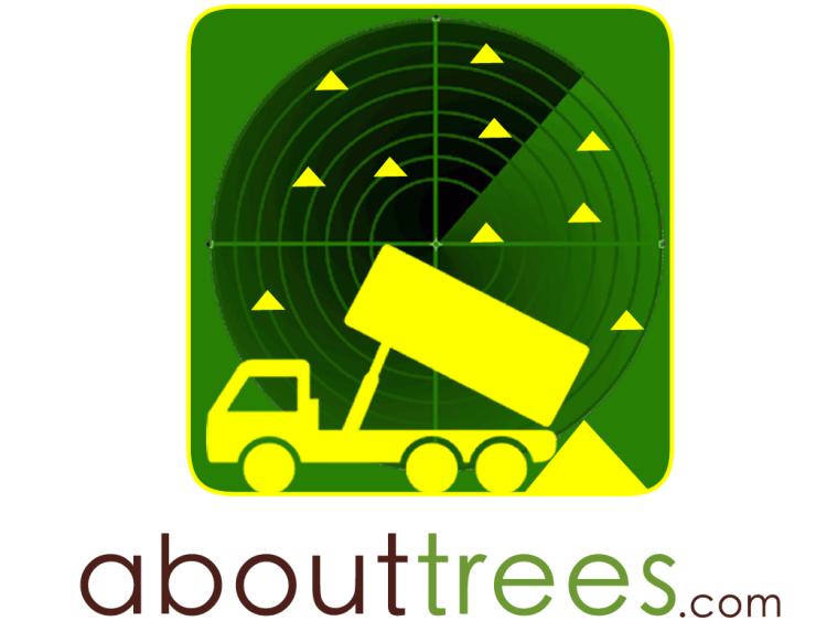 Free wood chip mulch