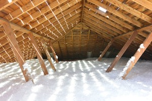 insulation in attic is great way to go green