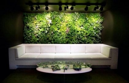vertical green living gardens