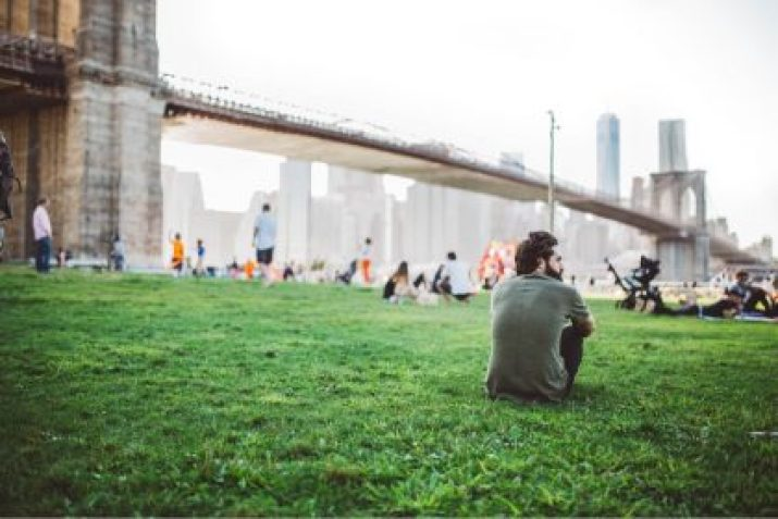 Urban scapes, open landscapes, shared green spaces