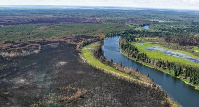Alberta's boreal forest could be dramatically altered by 2100 due to climate change, study shows