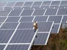 Spartan Solar aka Wolverine to Add Largest Solar Array in Northern Michigan Wolverine Power