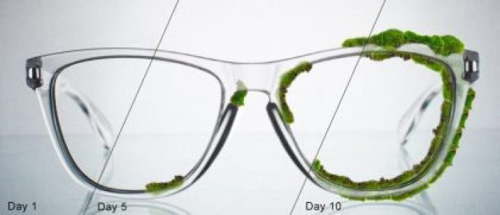 GlassesUSA.com Joins Sustainability Movement With Launch Of Moss Glasses
