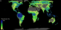 to plant one trillion trees. The areas with the most tree planting potential (Image: Crowther Lab / ETH Zurich)