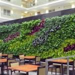 Ambius green wall