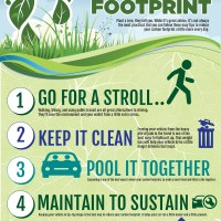 Best Ways to Reduce Your Carbon Footprint