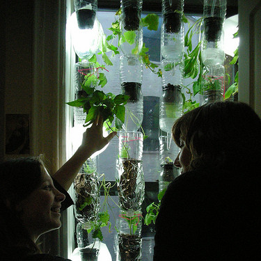 how to build a hydroponic window garden