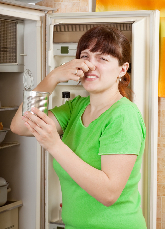 5 Natural Remedies For Deodorizing A Refrigerator Unstink