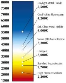 temp. chart