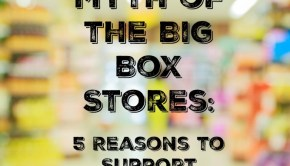 myth of the big box stores