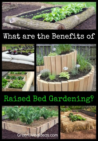 benefits of raised bed gardening
