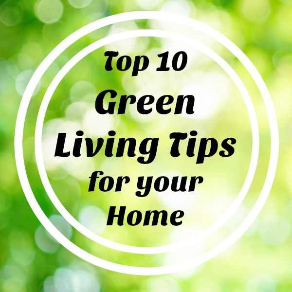 Our site has been around for almost a decade, and we've gathered thousands of green living tips. These are the best of the best.