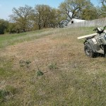 Reseeding pasture on the cheap