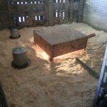 Chicken Fort