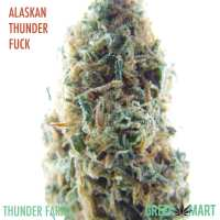 Alaskan Thunderfuck by Thunder Farms