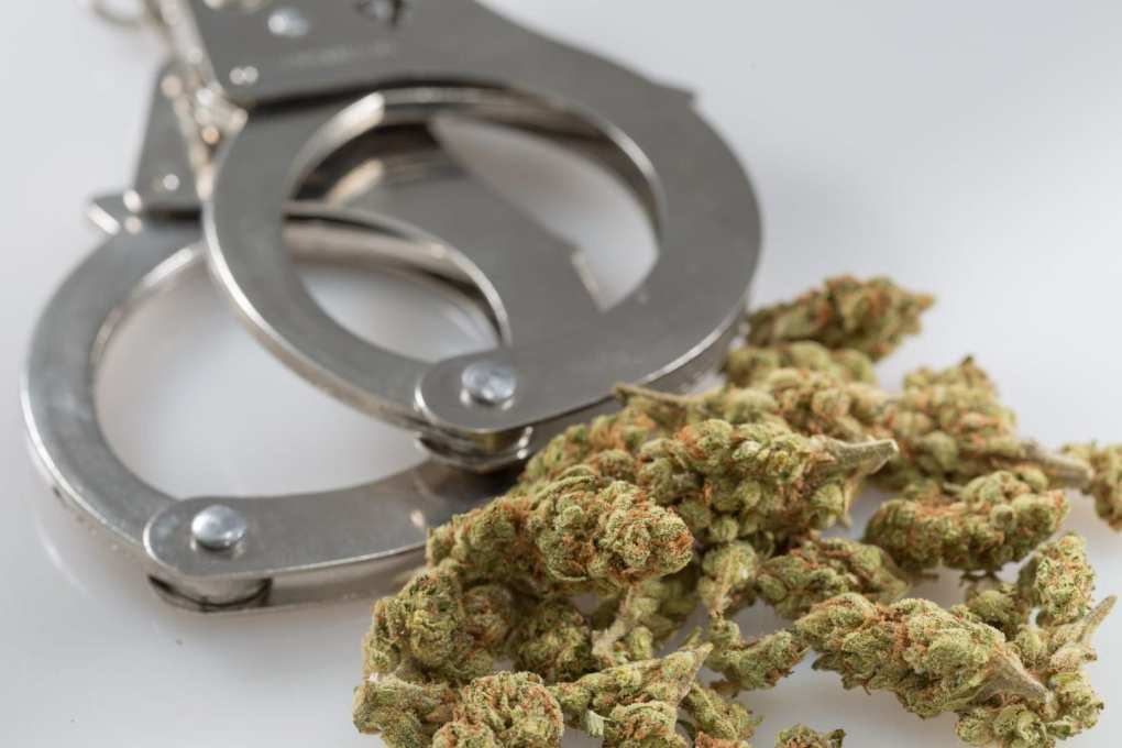 Legalizing Marijuana Helps Police Solve Other Crimes, New Study Shows