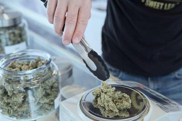 Legalizing Marijuana Brings Illicit Consumers To The Legal Market, Study Says