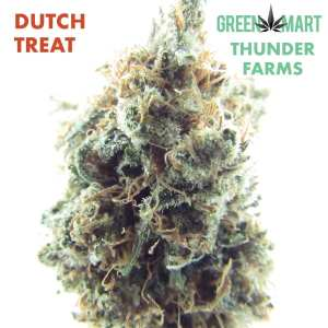 Dutch Treat Thunder Farms