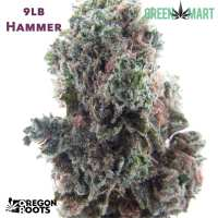 9lb Hammer - Oregon Roots
