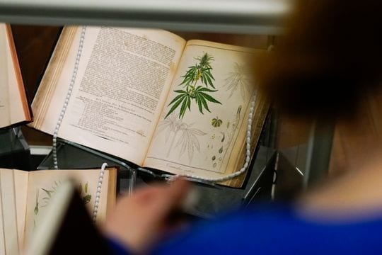 "An early 1860s German pharmaceutical manual featuring cannabis at ""Through the Rx Bottle,"" a history of medicinal cannabis at the Lloyd Library and Museum. (Photo: Ryan Terhune / The Enquirer)"