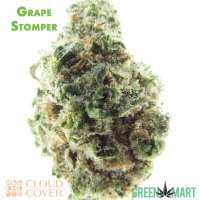 Grape Stomper by Cloud Cover Cannabis