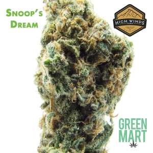 Snoops Dream by High Winds