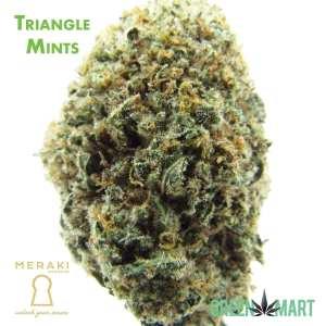 Triangle Mints by Meraki Gardens