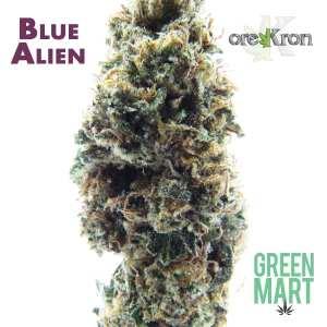 Blue Alien by Orekron