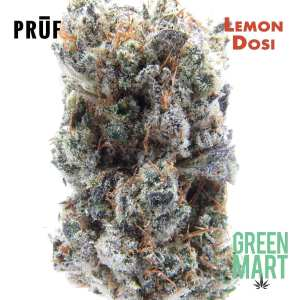 Lemon Dosi by Pruf Cultivars