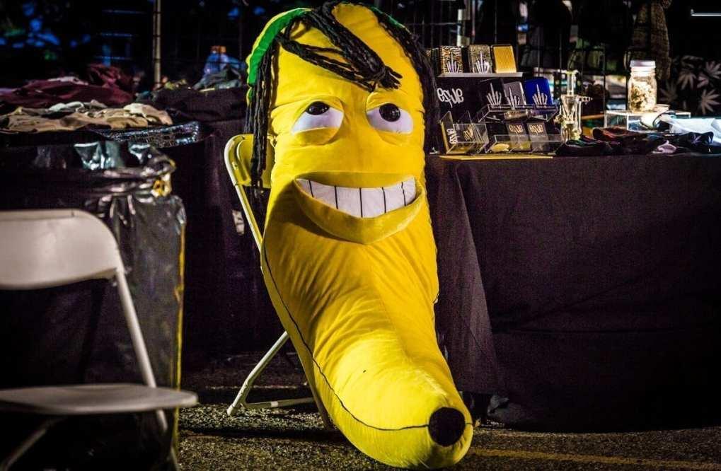 Cannabis Cup 2016. (Cannabis Reports)