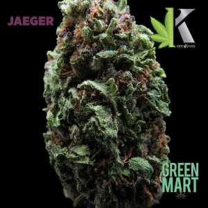 Jaeger by Orekron