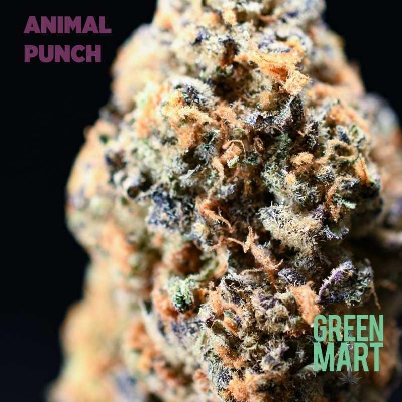 Animal Punch