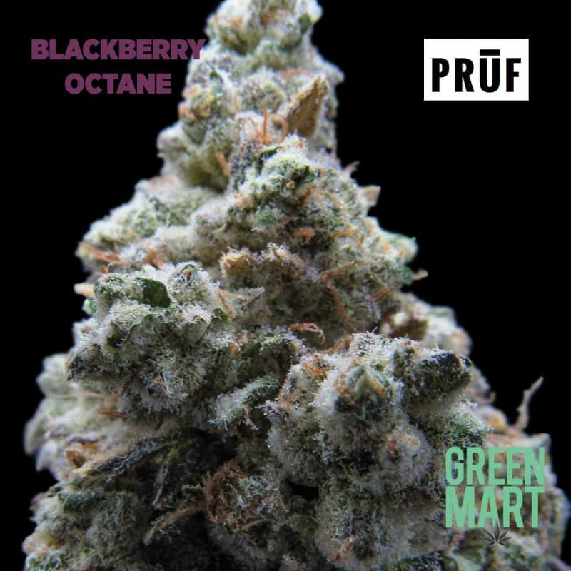 Blackberry Octane by Pruf Cultivar