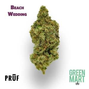 Beach Wedding by Pruf Cultivar