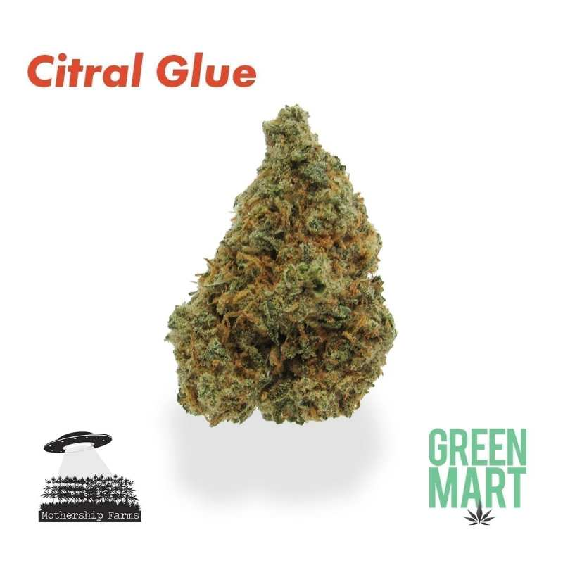 Citral Glue