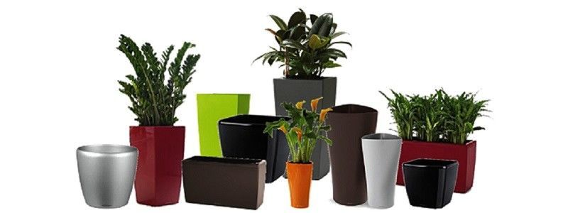 Pots Planters Containers Archives Greenmylife