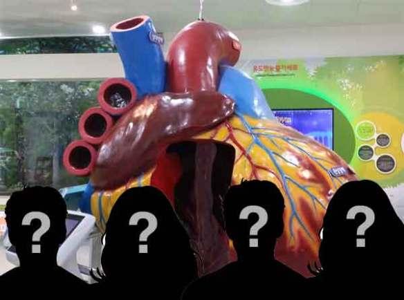 부정맥-부정맥 원인-부정맥 증상
