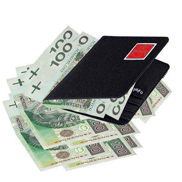지갑-돈-화폐-지갑-현금-카드-신용카드