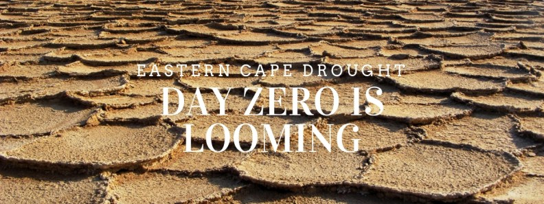 Drought-struck Eastern Cape - Dam levels dropping alarmingly