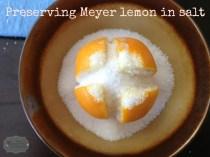 MeyerLemonsInSalt