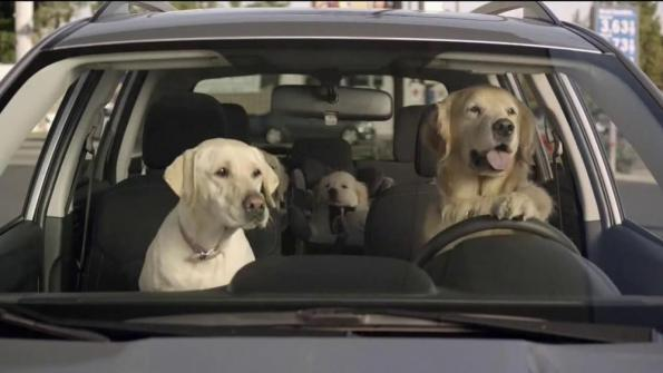 The Subaru Dogs