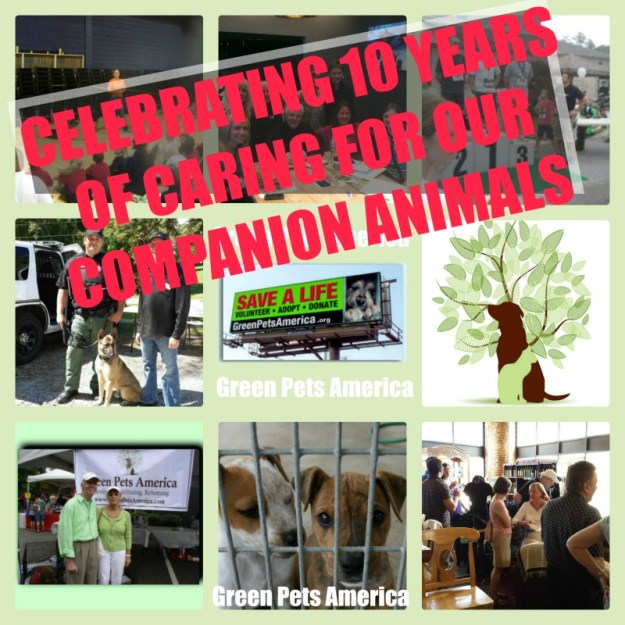 10 Year Anniversary Celebrated by Green Pets America